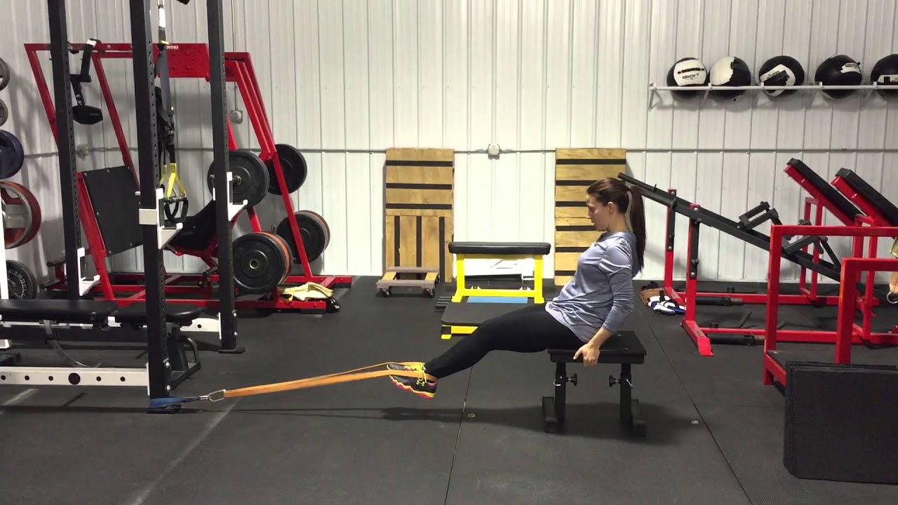 Image result for Seated band hamstring curl
