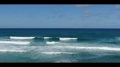 Lacanau Surf Report Vidéo - Lundi 29 Juin 11H30 #lacanauocean