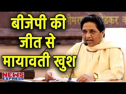 UP Civic Election में जीत तो Yogi लेकिन Mayawati के लिए छिपी है 'खुशखबरी'