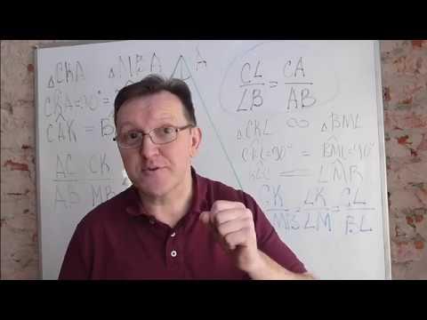 Как биссектриса делит противоположную сторону треугольника