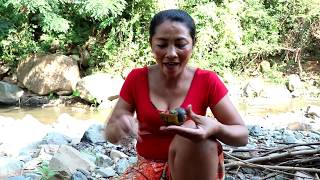 Survival skills: Catch snails & grilled with peppers for food - Cooking snails eating delicious #32