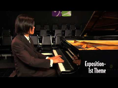 Discovery Orchestra Chat 119 BEETHOVEN APPASSIONATA Part 4 with George Marriner Maull & Stephen Wu