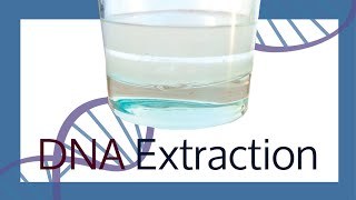 Extracting your own DNA