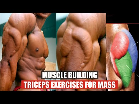 4 Muscle Building Triceps Exercises