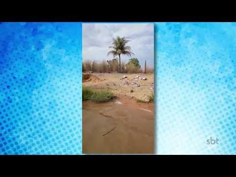 O Povo na TV: Telespectador registra lixo acumulado em praia da capital