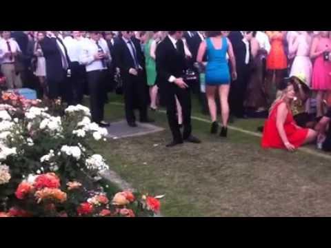 Drunken Melbourne Cup brawling