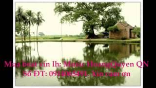 Viet nam que huong toi beat karaoke Thanh thuy