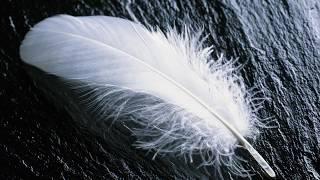 So erkennst du, ob sich dein Engel in deiner Nähe befindet | WorldCreepypasta