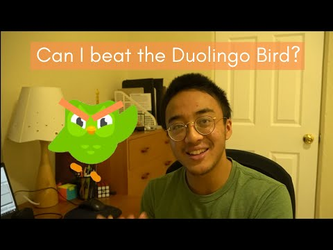 I tried learning Indonesian with Duolingo for 30 days