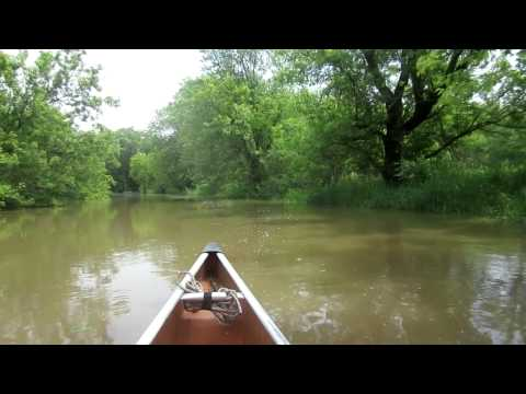 Paddling Upper Des Plaines River at High Water (Flood) Levels in a Canoe. HD
