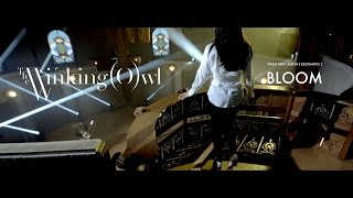 The Winking Owl - Bloom - Official Music Video