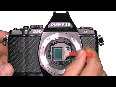 Sensor Cleaning Olympus OM-D Mirrorless Camera DIY