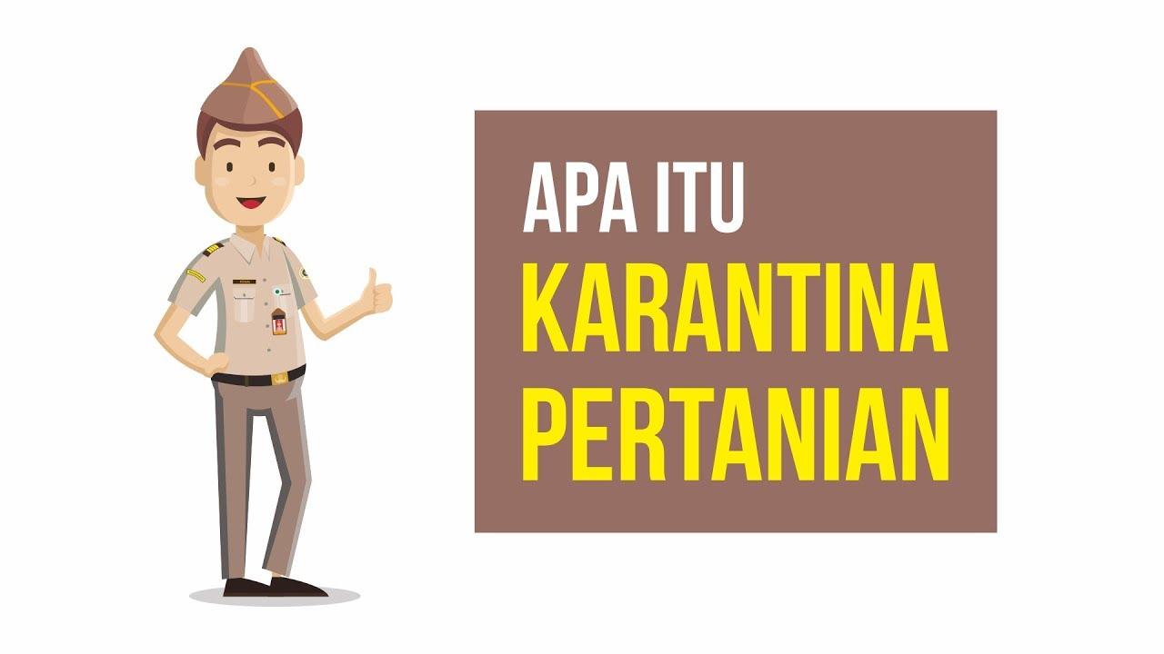 Apa Itu Karantina Pertanian Motion Graphic Karantina