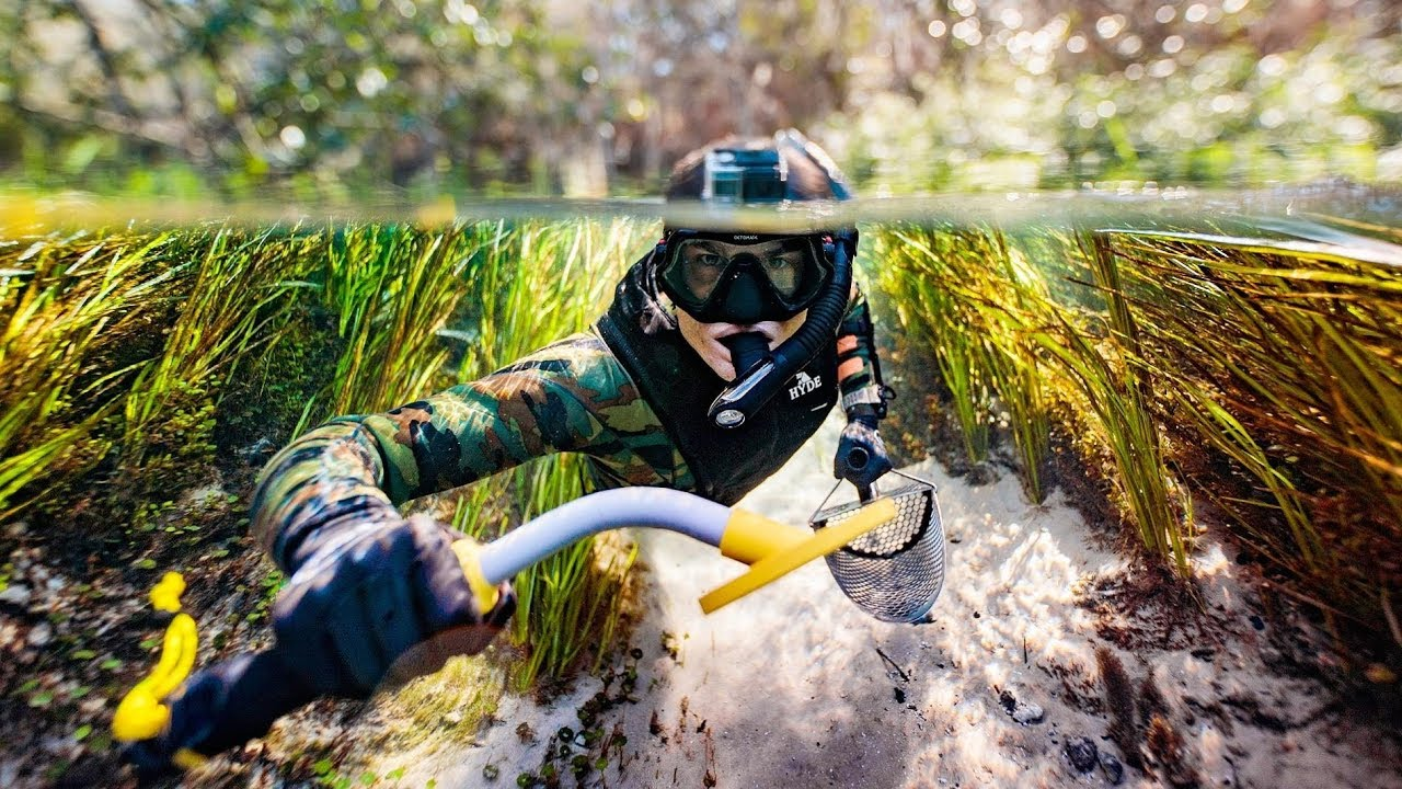 underwater-metal-detecting-for-lost-jewelry-in-florida-beware-alligators-dallmyd