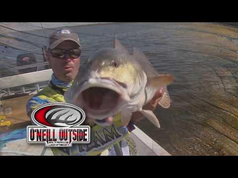 Fishing Near Wall Street? We Are!