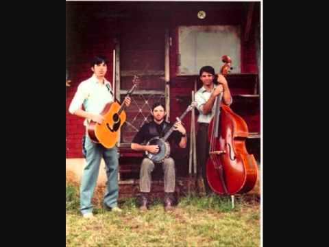 The Avett Brothers - Down with the Shine (Live)