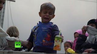 ООН: До 800 тысяч мирных жителей Мосула могут пострадать от действий ИГ