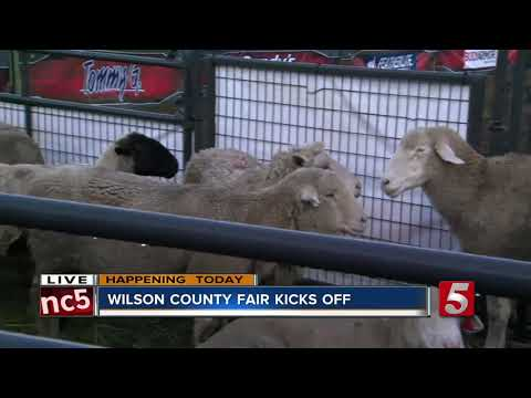 Wilson County Fair begins Friday in Lebanon