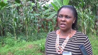 Bududa farmers embrace bio system technology for fertilisers, feeds