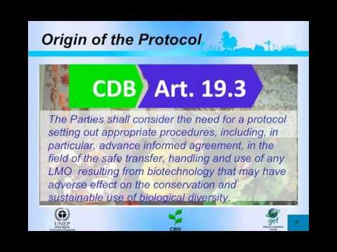 Introduction to the Cartagena Protocol