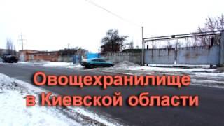 видео Холодильные камеры для хранения картофеля Украина Киев картофелехранилища цена
