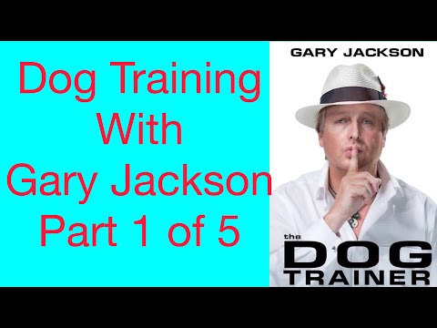 Dog training with Gary GAZ Jackson Part 1 of 5