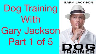 Dog Training Part 1 Of 5 Obedience Training With Gary Jackson