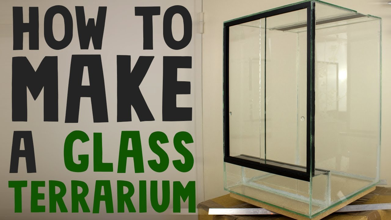 How To Build A Glass Terrarium Vivarium Youtube
