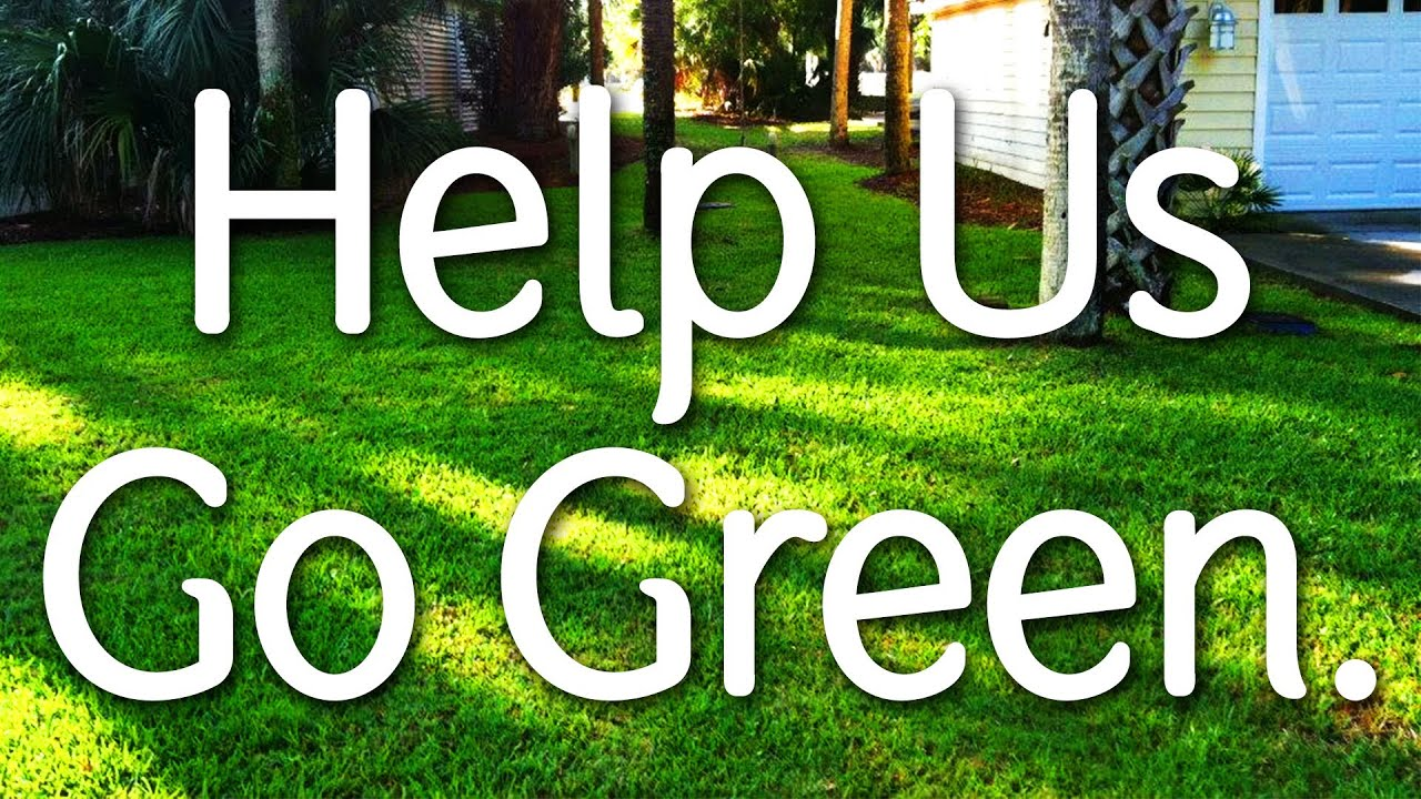 save environment When we think about doing something to save the environment, we think of the depleting natural resources, we think of environmental pollution, deforestation, endangered plant and animal species and we wonder how to contribute to saving nature.