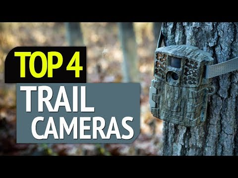 TOP 4: Best Trail Cameras 2019