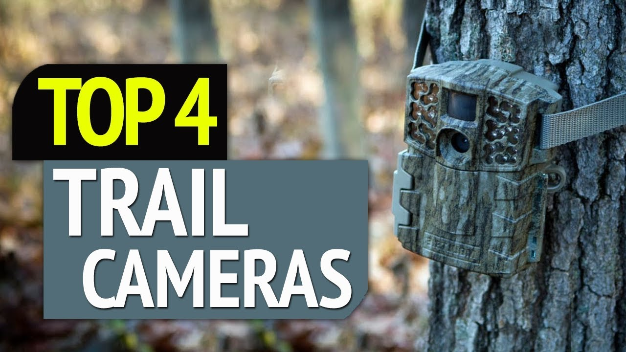 Best Trail Cameras 2020 TOP 4: Best Trail Cameras 2019   YouTube