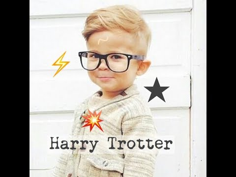 Harry Trotter/Potter - Children's Bedtime Story/Meditation