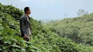 Rudi Putra, 2014 Goldman Environmental Prize, Indonesia