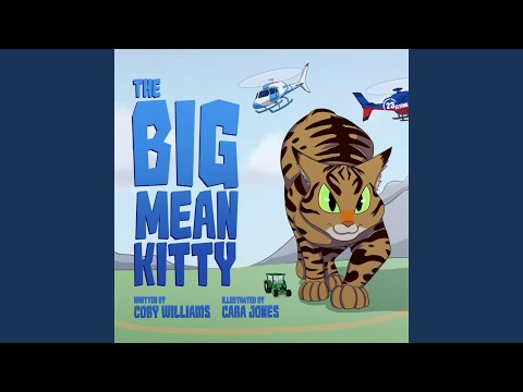 The Big Mean Kitty Song