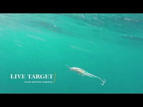 How Lures Swim: Live Target Glass Minnow Jerkbait