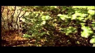 O Re Paakkhi [Full Song] Khoya Khoya Chand