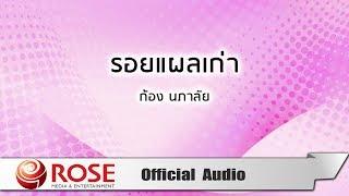 รอยแผลเก่า - ก้อง นภาลัย (Official Audio)