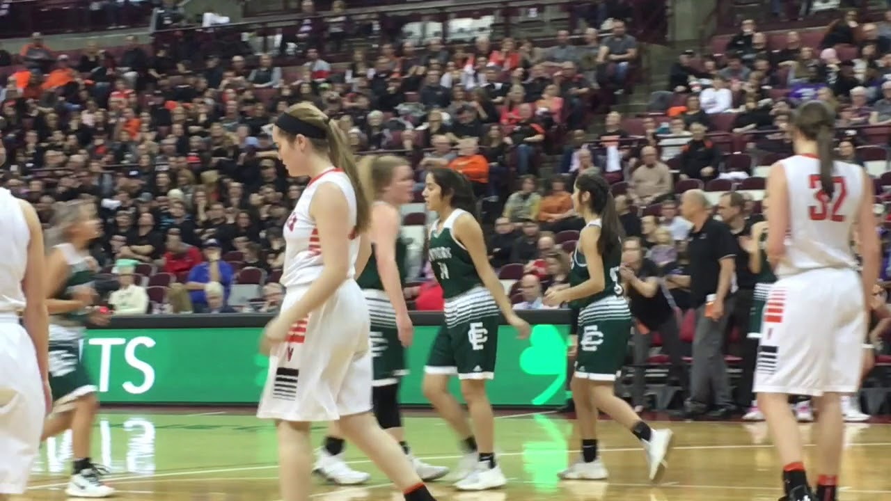 Cleveland high school girls basketball cleveland elyria catholic falls to versailles 63 47 in ohsaa division iii girls basketball fandeluxe Image collections
