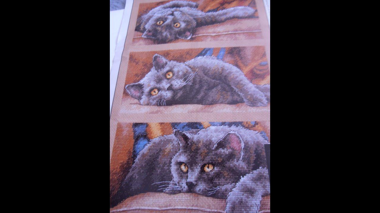 Вышивка от dimensions кот