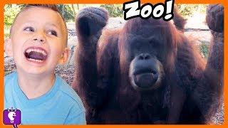 Go to ZOO! Monkeys! Giraffes and Koala Bears -- Vacation Trip with HobbyKidsTV
