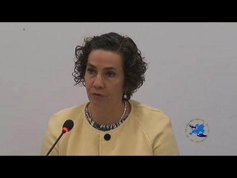 1 Panel: LES BARRIÈRES MISES À L'ARRIVÉE DES DEMANDEURS D'ASILE PAR VOIE AÉRIENNE