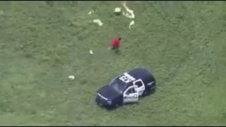 Houston PD Police Helicopter Pilot Pursuit