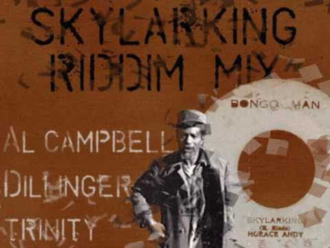 Skylarking Riddim Mix