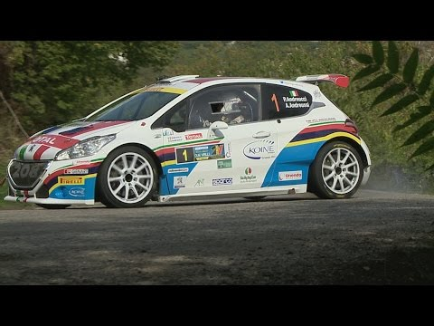 Rally Due Valli 2015   Paolo Andreucci E Peugeot 208 T16   Shakedown