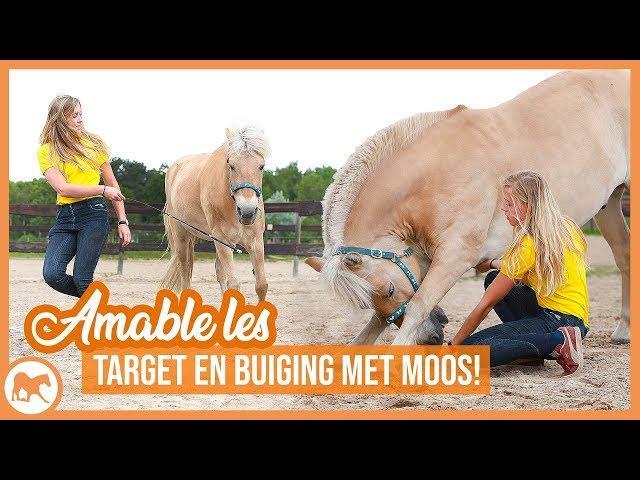 Hoefwijzer les met Moos | Target en buiging