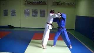 Technique : Harai-Goshi