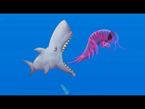 NANO SHARK Dominates the OCEAN! - Tasty Blue Gameplay - Game like IO game