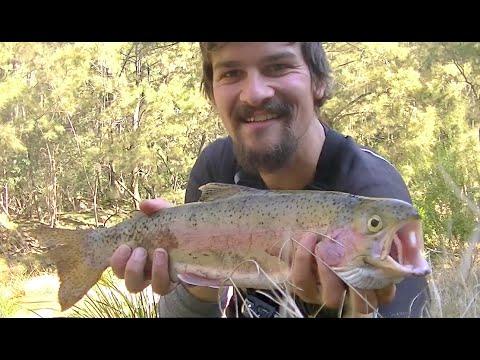 Coxs River Trout Adventure