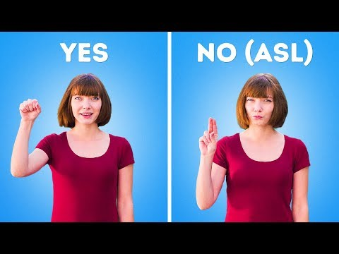 SIGN LANGUAGE FOR BEGINNERS