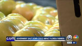 Government shut down could impact Florida farmers